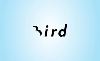 Clever Bird Logo